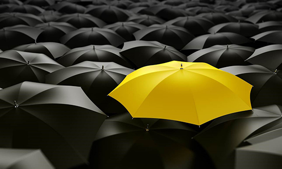 branding yellow umbrella